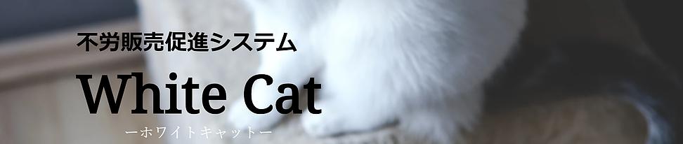 whitecat01